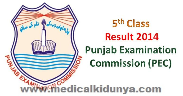 Punjab Examination Commission PEC Board Grade 5 Class 5 Grade V Class V Result 2014