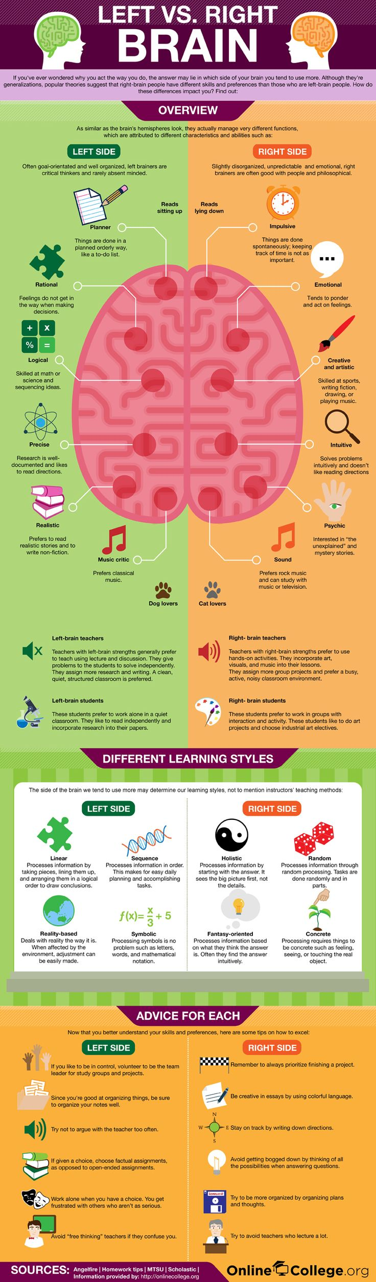 Left Brain Vs. Right Brain The Eye Opening Insights