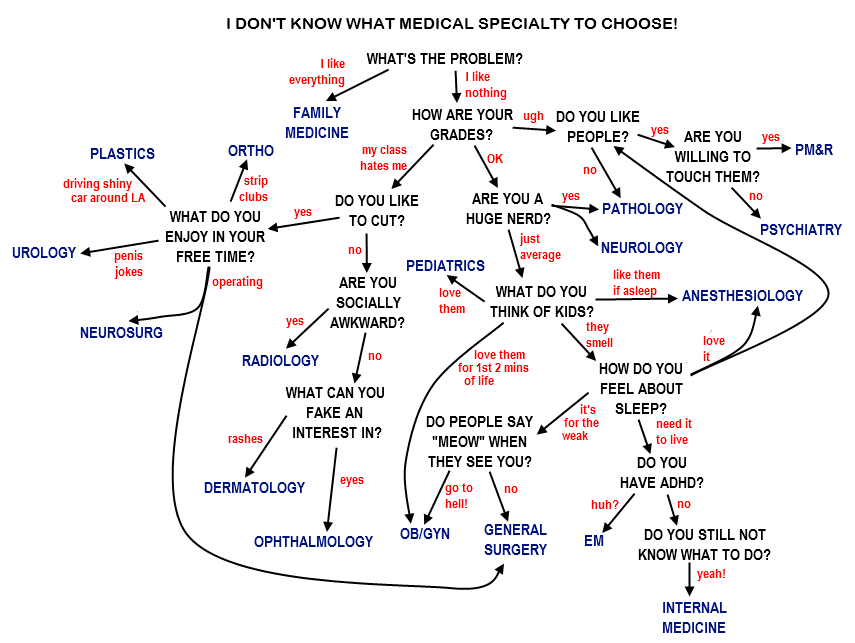 The World's Most Sophisticated Algorithm for Choosing a Medical Speciality