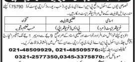Physical Therapists Jobs in Special Children School Mauripur Karachi